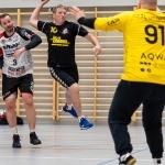 H2_SGRuwo_Handball_Emmen_a-020